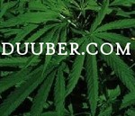 Duuber - Cumberland Featured Marijuana Dispensary image