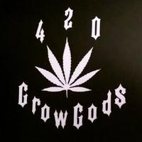 420 North Marijuana Dispensary featured image