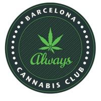 Always Cannabis Club Barcelona Marijuana Dispensary featured image
