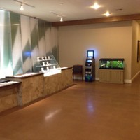 Arizona Organix Marijuana Dispensary featured image