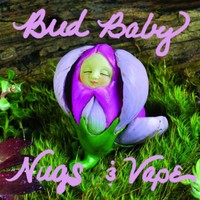 Bud Baby Nugs & Vape Marijuana Dispensary featured image