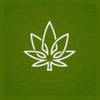 Cannabuzz Hamilton Marijuana Dispensary featured image