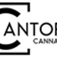 Cantopia Cannabis Marijuana Dispensary featured image