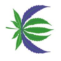 Curbstone Exchange Marijuana Dispensary featured image