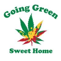 Going Green - Sweet Home Marijuana Dispensary featured image