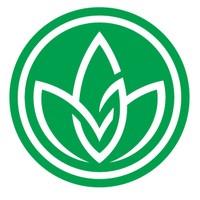 Green Merchant Cannabis Boutique (Liberty Village) Marijuana Dispensary featured image