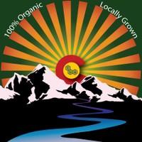 The Herbal Alternative Marijuana Dispensary featured image