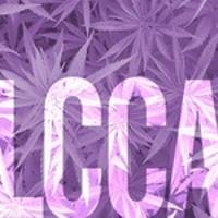 Lilac City Collective Association Marijuana Dispensary featured image