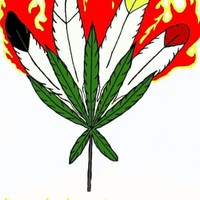 Maryjane's Pure Cure Marijuana Dispensary featured image