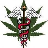 Modern Medicinal MT L.L.P Marijuana Dispensary featured image