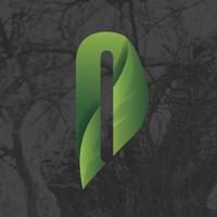 Olive Tree Wellness Center Marijuana Dispensary featured image