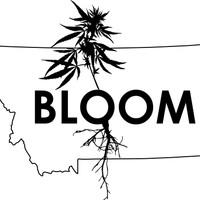 Bloom - East Helena Marijuana Dispensary featured image