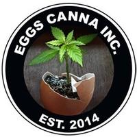 Eggs Canna - Hastings Marijuana Dispensary featured image