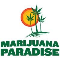 Marijuana Paradise Marijuana Dispensary featured image