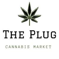The Plug NYC Marijuana Dispensary featured image