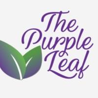 Purple Leaf Marijuana Dispensary featured image