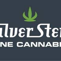 Silver Stem Marijuana Dispensary featured image