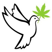 Supplier454 Marijuana Dispensary featured image