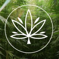 Weed Warehouse Marijuana Dispensary featured image
