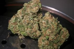 Afgoo Marijuana Strain product image