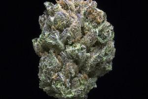 Afgooey Marijuana Strain product image
