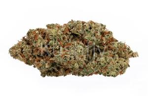 Apple Jack Marijuana Strain product image
