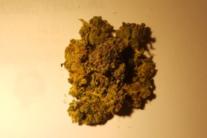 Atomic Northern Lights Marijuana Strain product image
