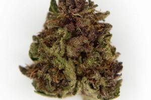 Birthday Cake Kush Marijuana Strain product image