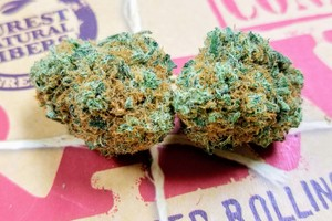 Blackberry Kush Marijuana Strain product image