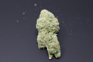 Blueberry Muffin Marijuana Strain product image