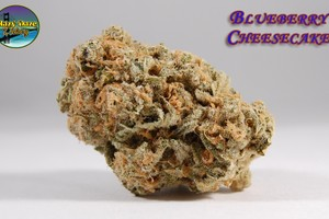 Blueberry Cheesecake Marijuana Strain product image