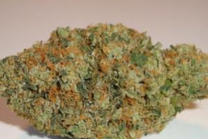 Bubblegum Marijuana Strain product image