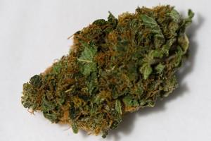 Diesel Marijuana Strain product image