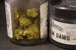 Chemdawg Marijuana Strain product image