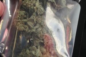 Chocolope Marijuana Strain product image
