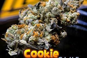 Cookie Glue Marijuana Strain product image