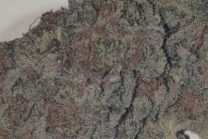 Crunch Berries Marijuana Strain product image