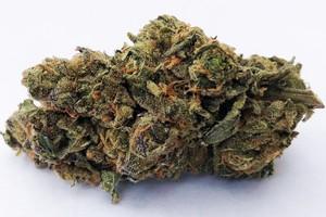 do-si-dos Marijuana Strain product image