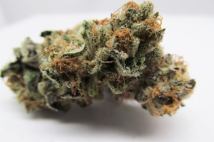 White Fire Alien OG Marijuana Strain product image