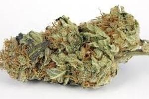 Flo Marijuana Strain product image