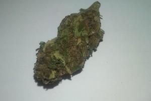 Game Changer Marijuana Strain product image
