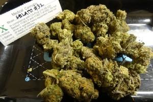 Gelato Marijuana Strain product image