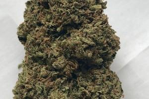 Godfather OG Marijuana Strain product image