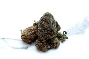 God'S Green Crack Marijuana Strain product image