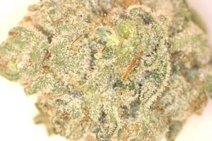 Goji OG Marijuana Strain product image