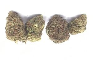 Grapefruit Kush Marijuana Strain product image