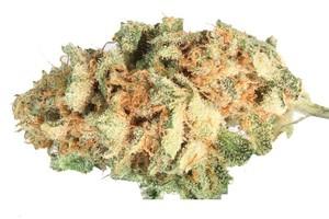Harlequin Marijuana Strain product image