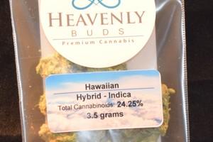 Hawaiian Marijuana Strain product image