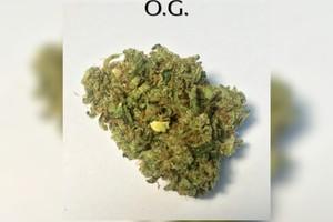 Holy Grail OG Marijuana Strain product image