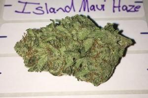 Island Maui Haze Marijuana Strain product image